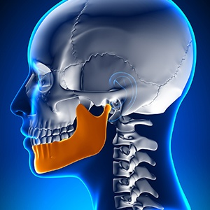 Animation of jaw and skull bone